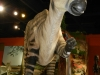 dinosaur-isle-museum4