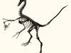 Dino with Scorpion