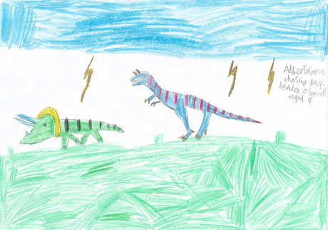 Albertosaurus chasing his Triceratops prey (done by Alex O'Donnell - age 9)